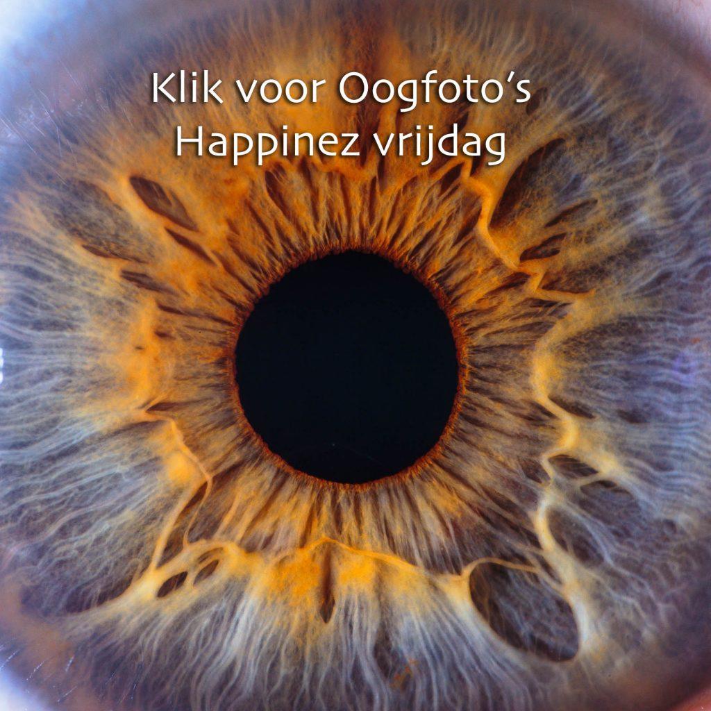 Oogfoto Happinez festival taets zaandam amsterdam irisfotografie oogfotografie kunstwerk van je oog irislove