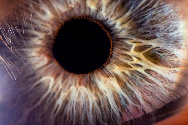 web-20210128-oogfoto-website-7486