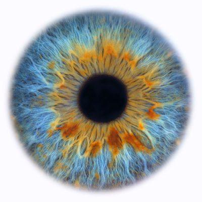 web-202010129-oogfoto-HR-Tiff-4238-vierkant